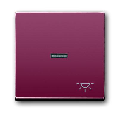 Клавиша для механизма 1-клавишного выключателя/переключателя/кнопки, с прозрачной линзой и символом 1751-0-2777 ABB