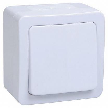 ВСп20-1-0-ГПБ выкл 1кл проход. о/у IP54 (цвет клавиши: белый) ГЕРМЕС PLUS (цвет клавиши: белый) EVMP12-K01-10-54-EC IEK